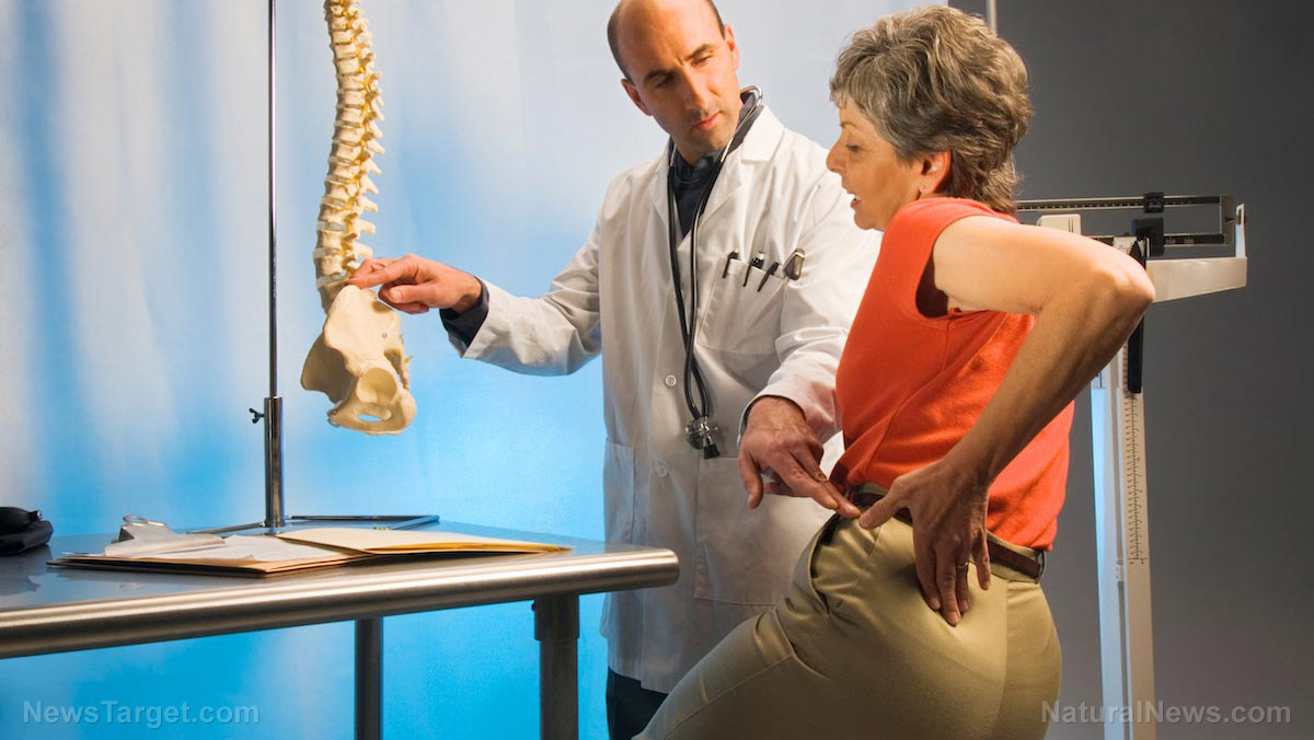 Getting enough protein, calcium and other micronutrients boosts bone health and lowers osteoporosis risk, reveals study