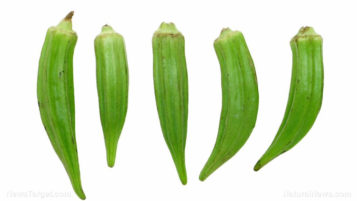 Image: A fool-proof guide to growing your own okra