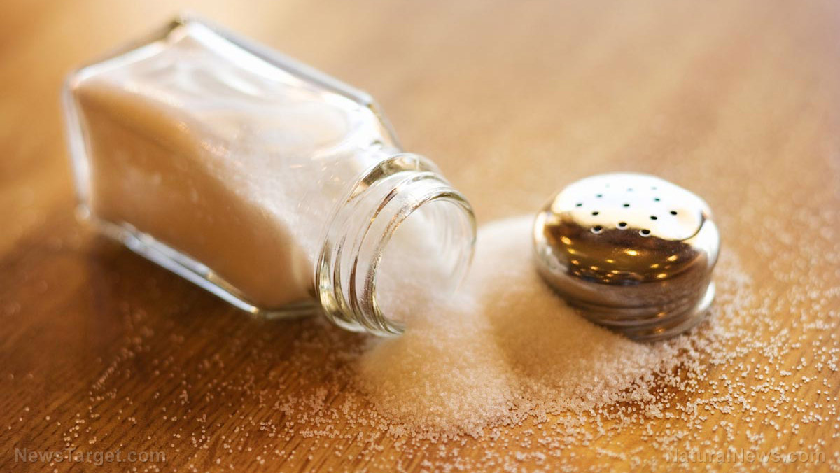 Image: Over 90 percent of salt brands contain MICROPLASTICS, scientists find