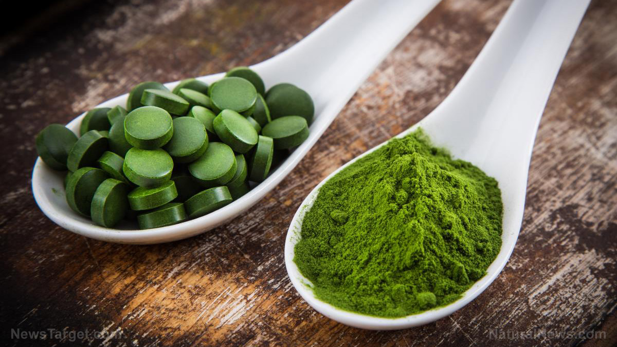 "Image: Spirulina found to boost the body's type 1 interferon response to fight RNA viral infections ""including coronavirus,"" new science finds"