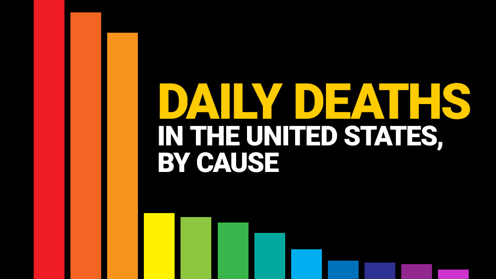Image: Infographic: Daily deaths in the United States, by cause – covid-19, seasonal flu, heart disease, cancer, accidents and more