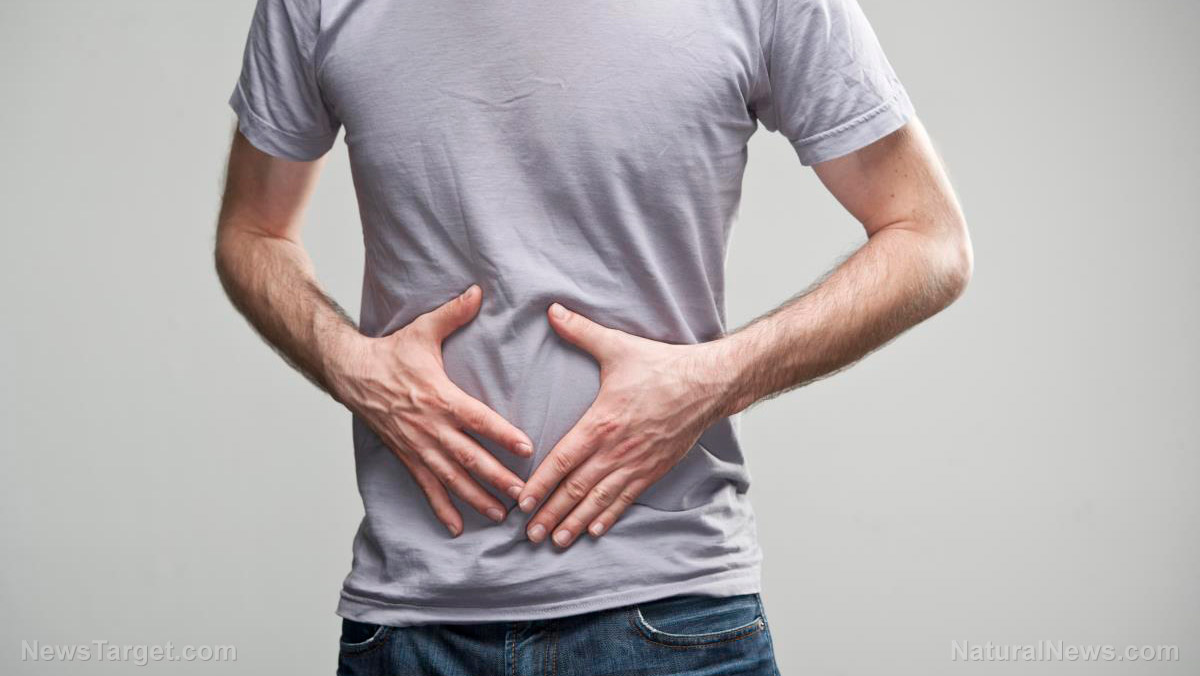 Image: Quercetin: A natural painkiller for people with IBS