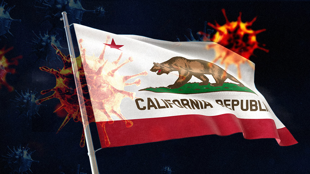 California Now Less Than 90 Days Away From Financial Collapse! Anarchy to Follow! +Video