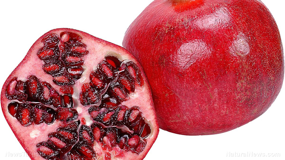 Image: You are what you eat: 3 foods that look eerily similar to the organs they heal