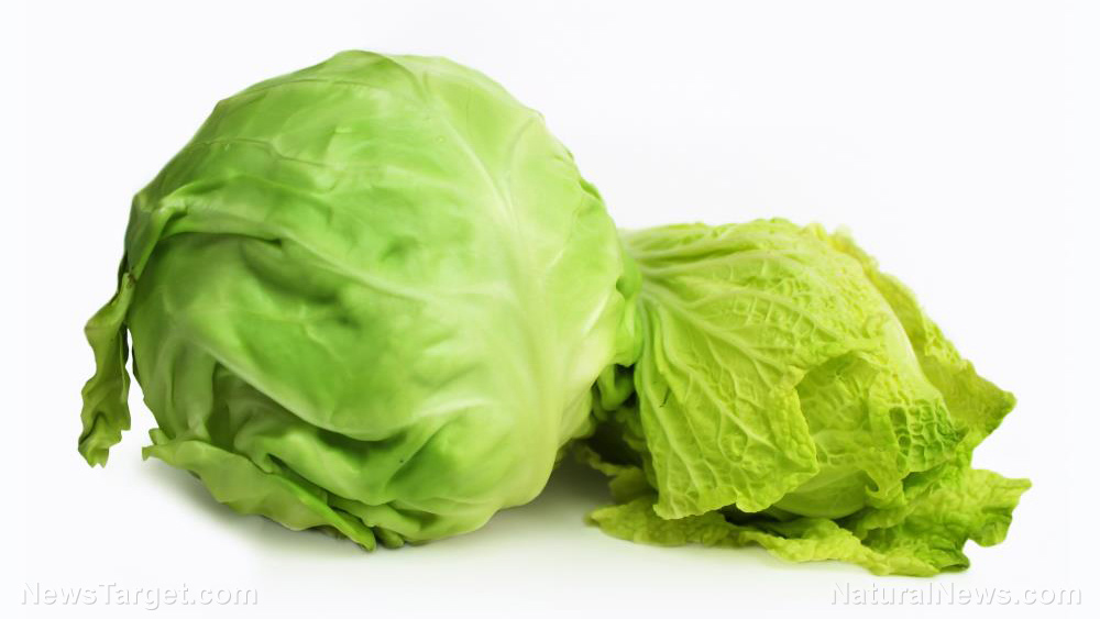 Image: Better than meds: Study finds cabbage juice contains compounds that promote stomach health and treat peptic ulcers
