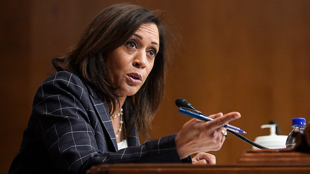 Image: Never forget: If Kamala Harris takes over as president, she WILL come after guns with a vengeance and may send law enforcement to take them