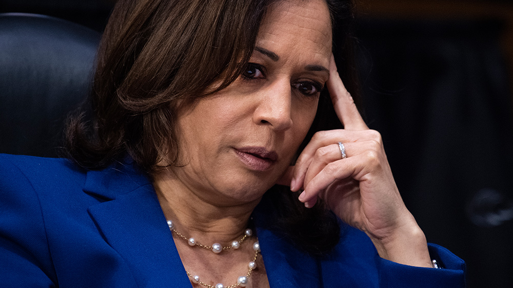 Image: Kamala Harris wants to eliminate all private health insurance