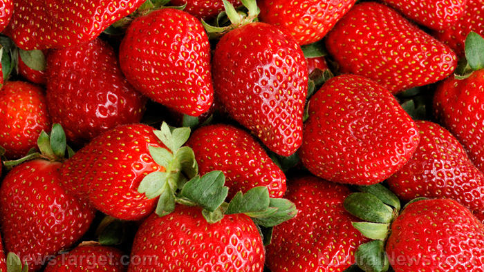 Image: Consuming more strawberries may help lower Alzheimer's risk among the elderly