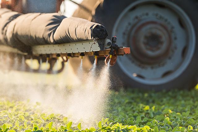 Imagen: Descubriendo la verdad sobre los pesticidas en los alimentos