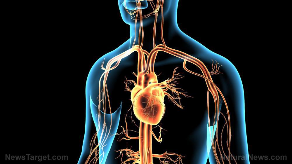 Image: Coronavirus can break your heart – literally – says new study
