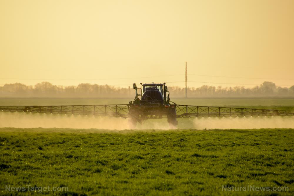 Image: Glyphosate and GMOs: Toxic weed killer linked to a HIGHER risk of kidney disease