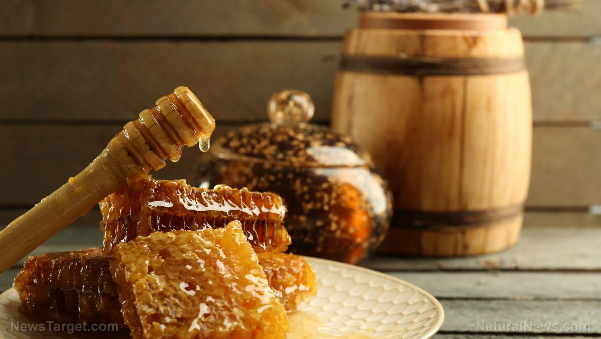 Image: Fight bacteria with this sweet superfood: 5 Incredible facts about honey