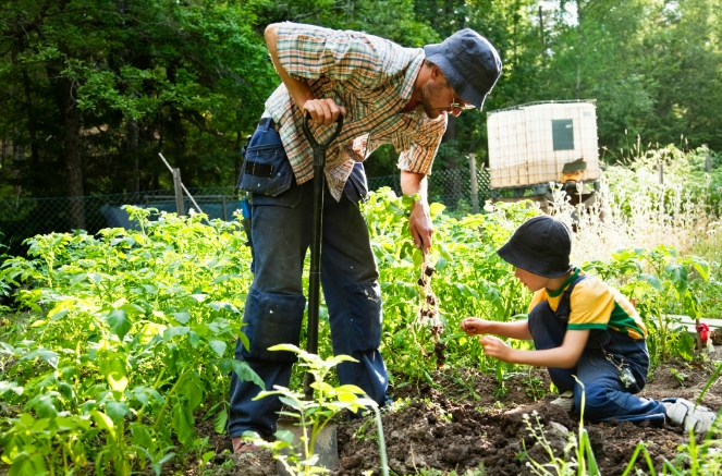 Image: Essential homesteading skills for self-sufficiency