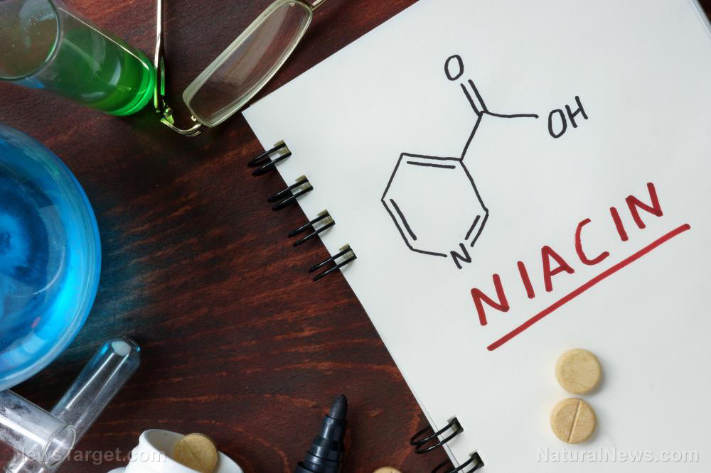 Image: Understanding how niacin treats high cholesterol levels