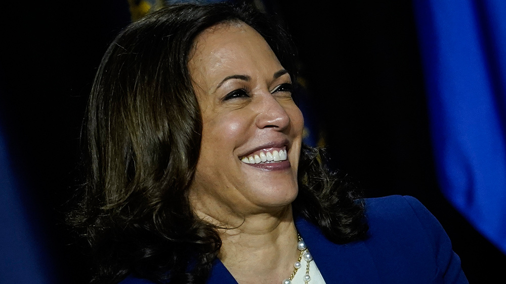 Image: Kamala Harris named in Hunter Biden email as key contact on China deal