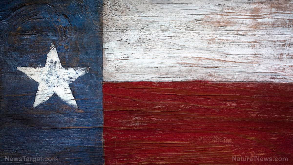 Image: Situation Update, Dec. 10th – Texas lawsuit with SCOTUS reveals pathway to instant victory for Trump