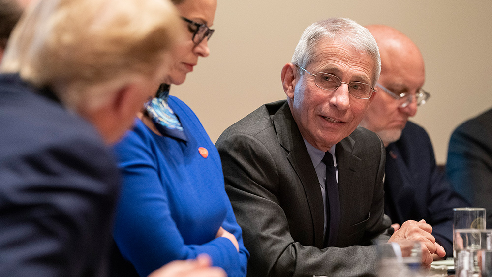 Image: Anthony Fauci lectures Americans over COVID-19: It spread because we have too much freedom