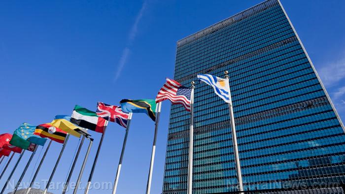 https://www.naturalnews.com/wp-content/uploads/sites/91/2020/12/United-Nations-Building-Flags.jpg