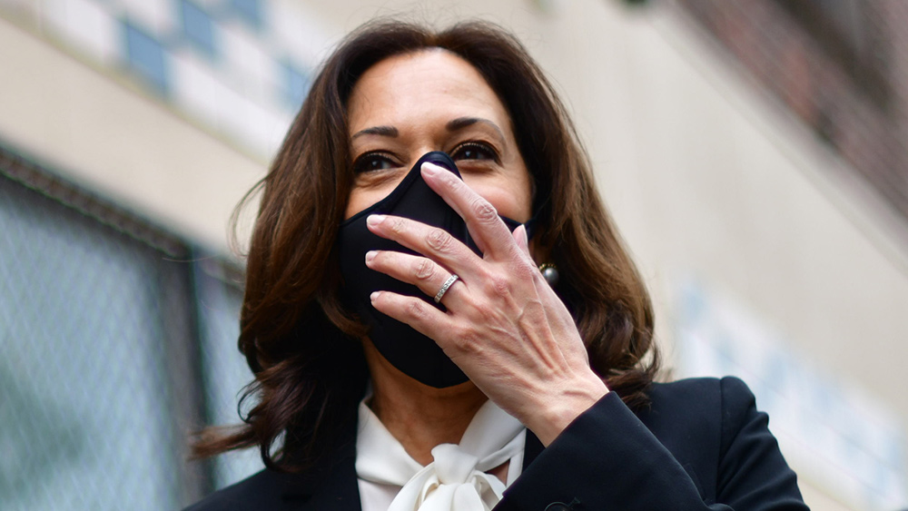 "Image: Seven months ago, Kamala Harris bailed out criminal rioters; now she wants to punish Capitol ""insurrectionists"""