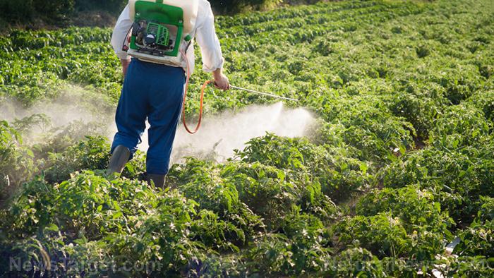 Exterminator-Pesticide-Spray-Garden-Crops.jpg