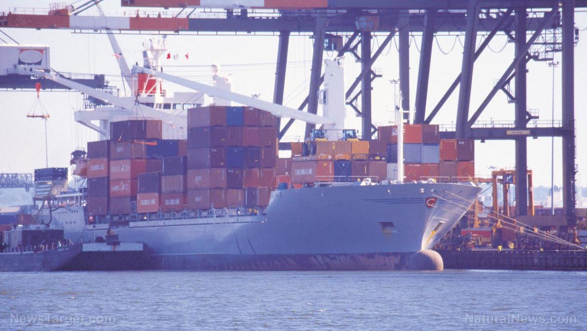 Image: VAX COLLAPSE: Vaccine mandates are causing catastrophic logistics failures in international shipping