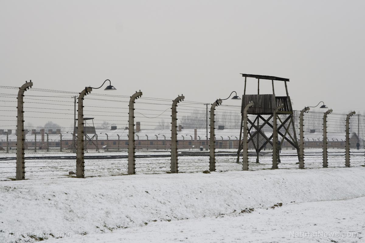 Image: NY Senate just passed a concentration camp bill to forcibly throw people in camps, just like the Nazis did in World War II