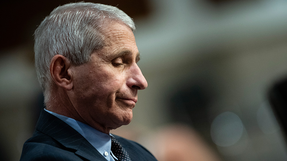 Image: If fraudulent Fauci is found GUILTY of lying about financing, creating and purposely releasing Covid-19, he could face the death penalty for treason