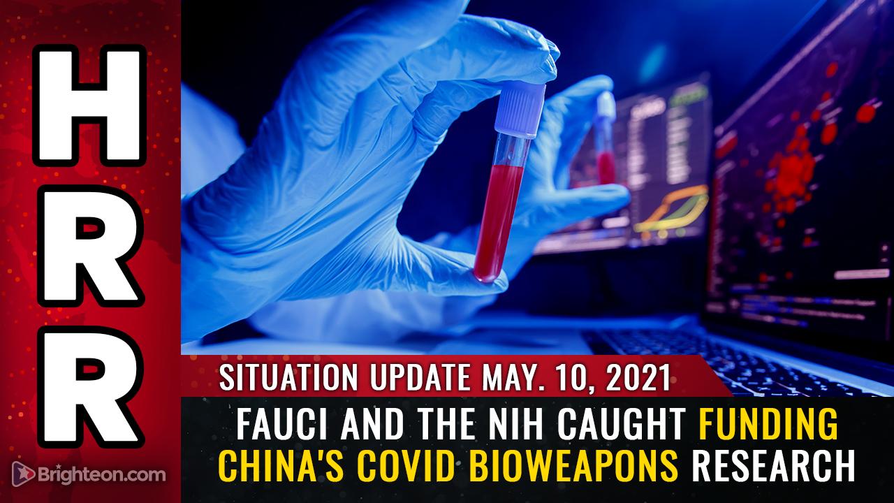 Immagine: Fauci e l'NIH hanno scoperto di finanziare la ricerca cinese sulle armi biologiche