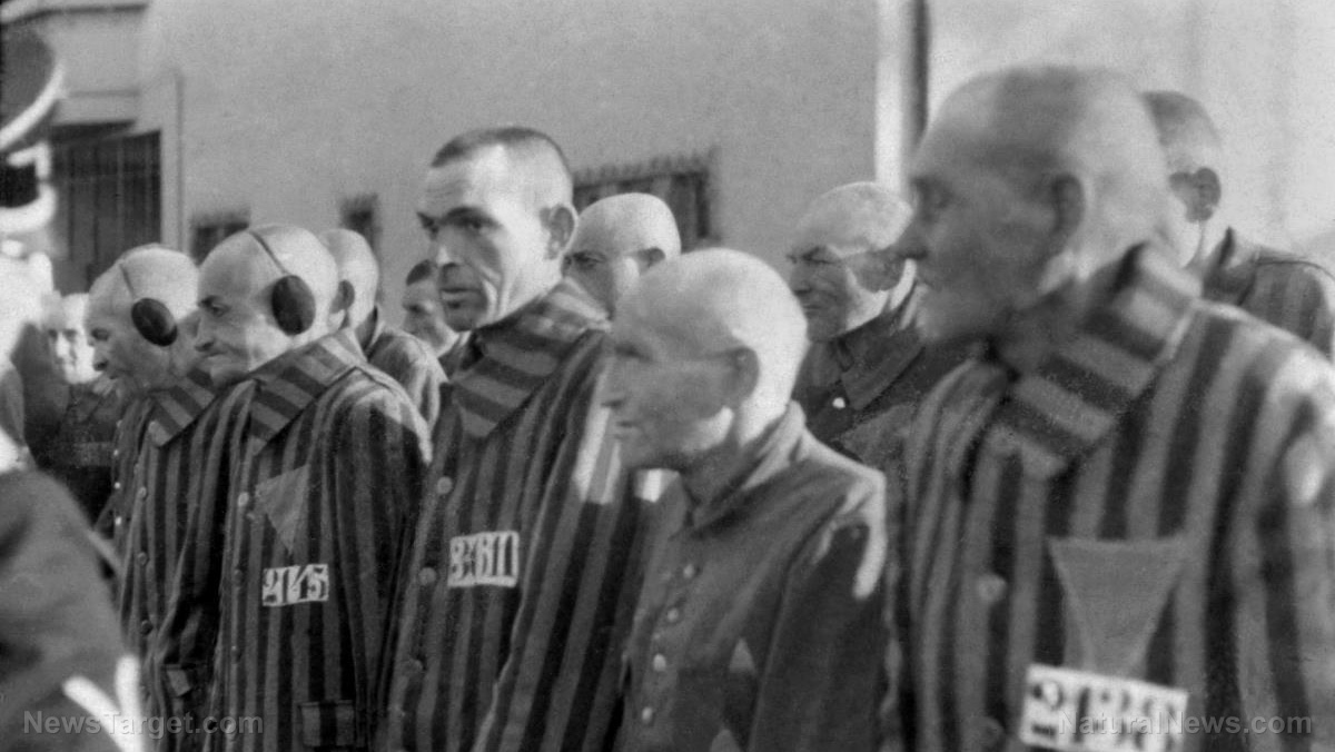 Image: New Hampshire school numbering children like concentration camp prisoners to track covid vaccination status