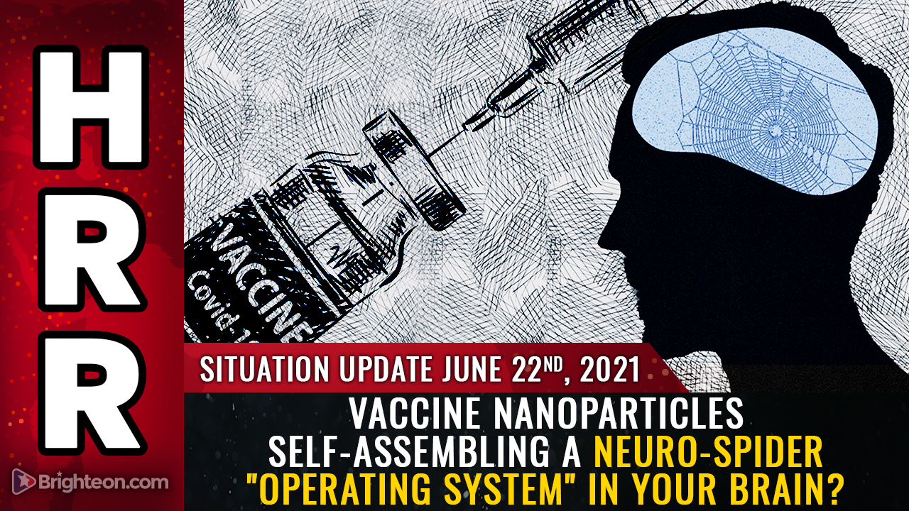 """Image: Do covid vaccines contain nanoparticles that self-assemble to build a biocircuitry """"operating system"""" to control your moods and thoughts?"""