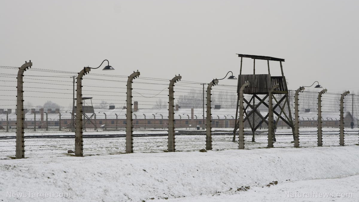 Nazi-Camp-Prison-Ww2.jpg