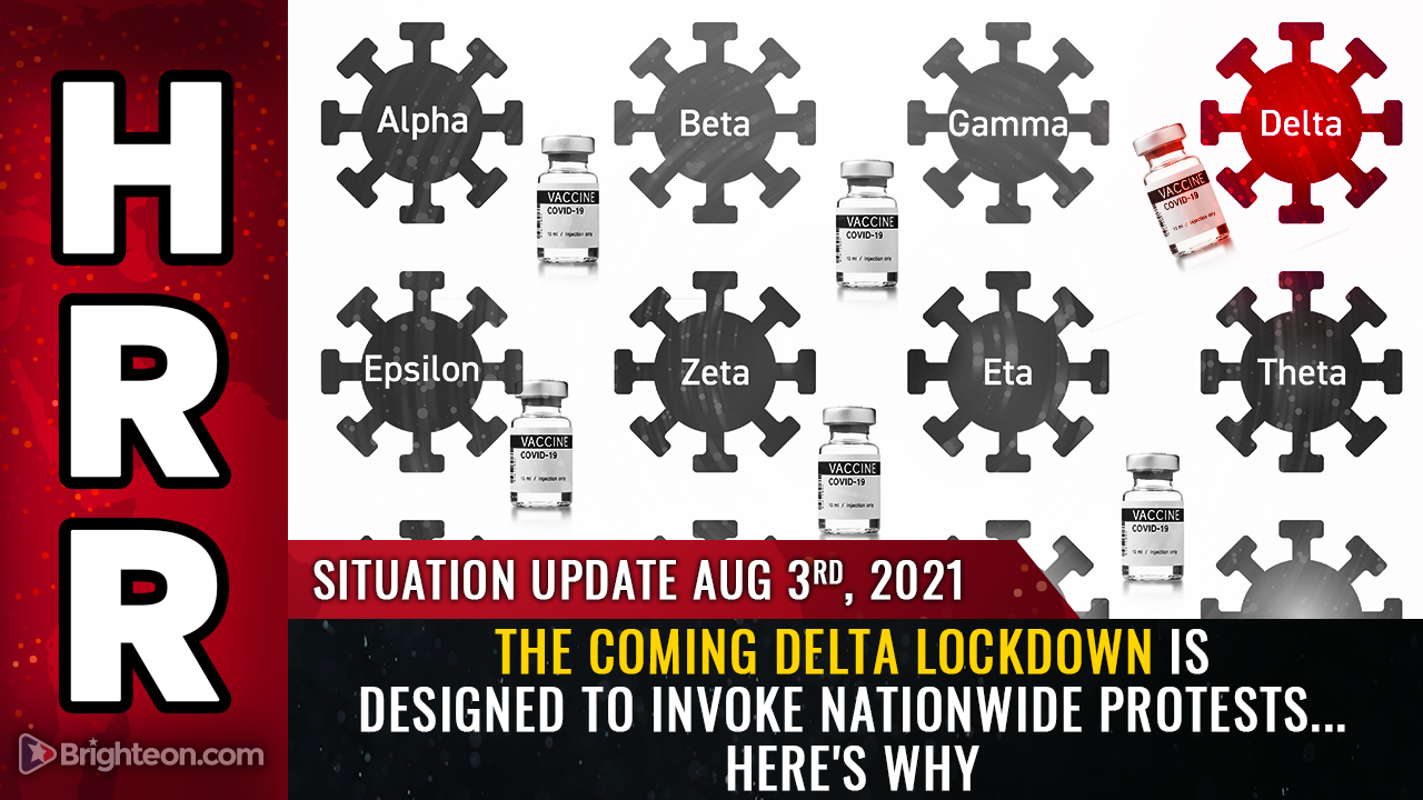 """Image: The coming Delta lockdown is DESIGNED to invoke nationwide protests so they can be exploited as a backdrop for false flag event to blame """"anti-vaxxers"""""""