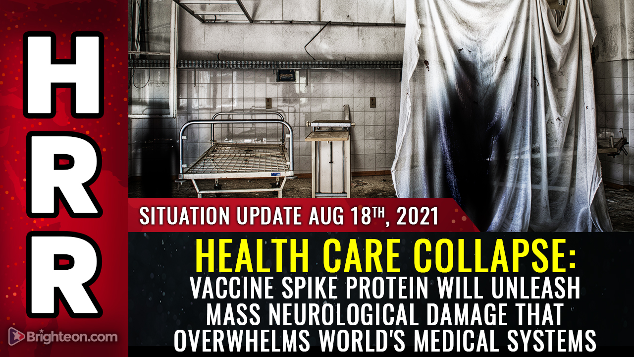 Image: HEALTH CARE COLLAPSE warning: Vaccine spike protein will unleash widespread neurological damage that overwhelms world's medical systems