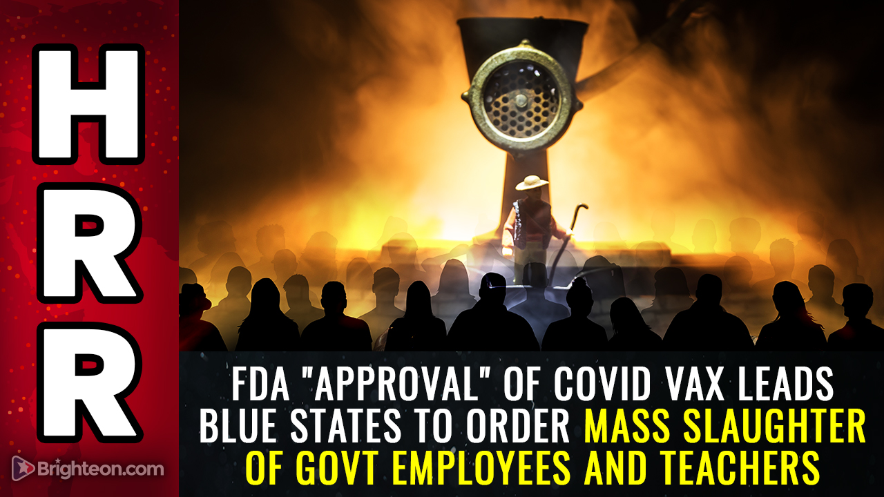 """Image: FDA vaccine """"approval"""" leads blue states to order the mass slaughter of teachers, workers and first responders"""