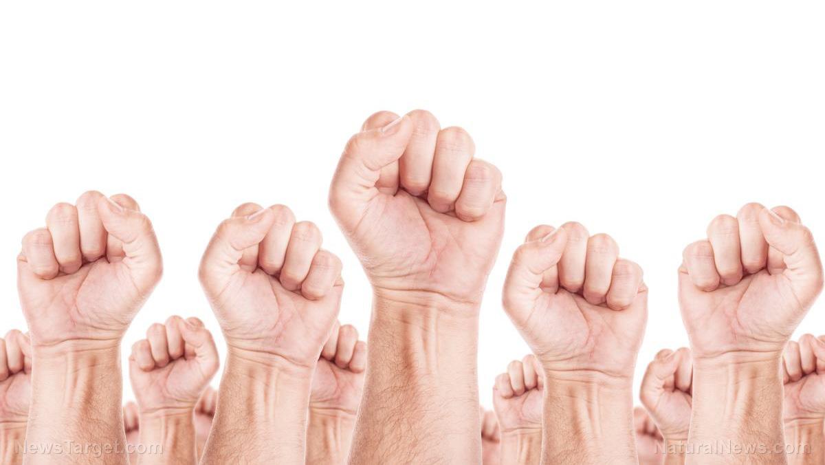 Union-Fist-Labor-Revolution-Strike-Syndicate-Revolt.jpg