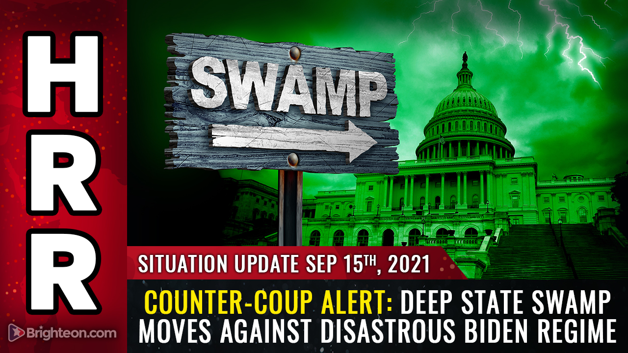 Image: COUNTER-COUP: Deep state swamp moves against disastrous Biden regime as swamp creatures realize the whole country could burn down if they don't stop the madness